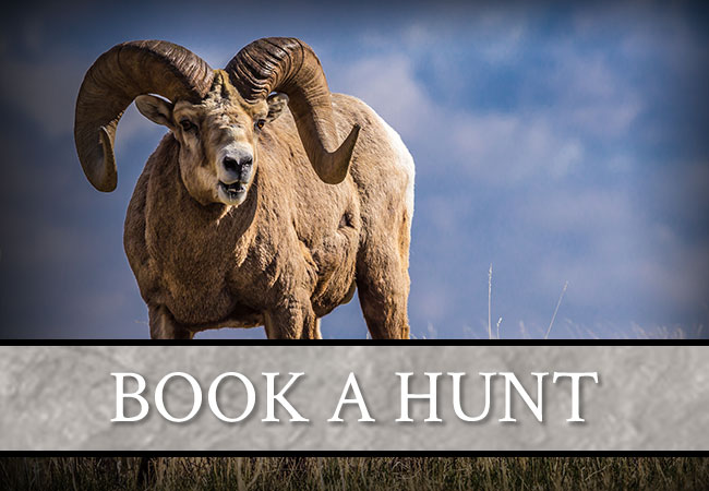 Book a Hunt with Carter Outfitting LTD